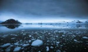 copeland-antarctica