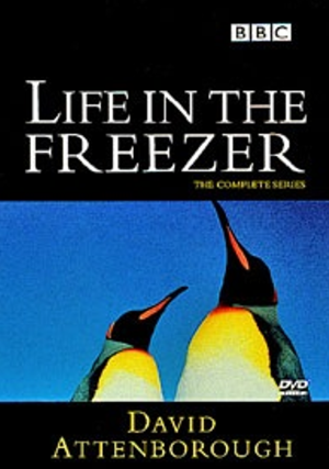 life-in-the-freezer1